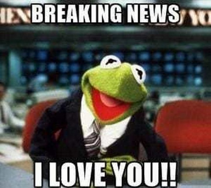 "101 I Love You Memes - ""Breaking news: I love you!!"""