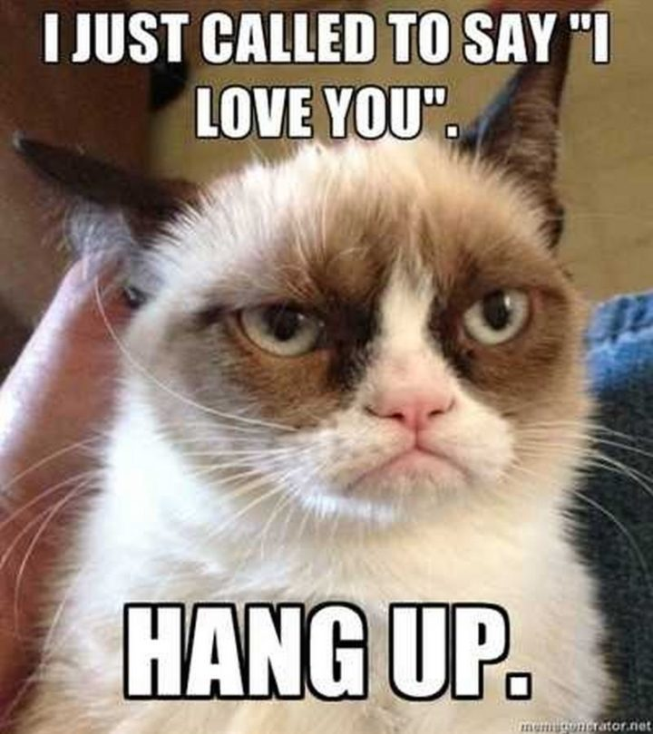"101 I Love You Memes - ""I just called to say 'I love you'. Hang up."""