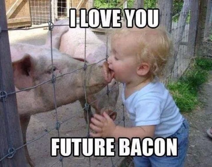 "101 I Love You Memes - ""I love you future bacon."""