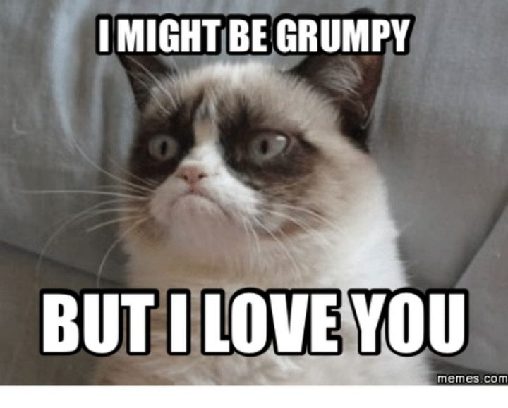 "101 I Love You Memes - ""I might be grumpy but I love you."""