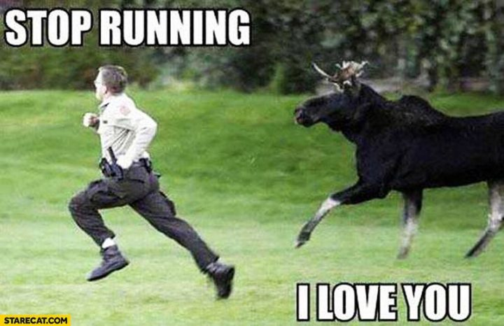 "101 I Love You Memes - ""Stop running. I love you."""