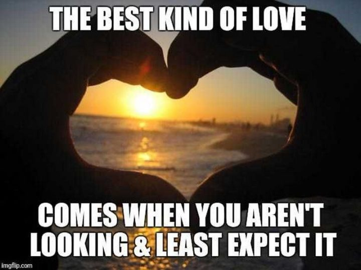 "101 I Love You Memes - ""The best kind of love comes when you aren't looking & least expect it."""