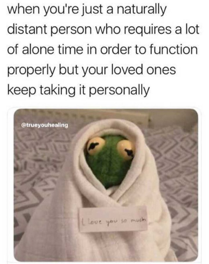 "101 I Love You Memes - ""When you're just a naturally distant person who requires a lot of alone time in order to function properly but your loved ones keep taking it personally."""