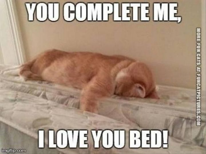 "101 I Love You Memes - ""You complete me, I love you bed!"""