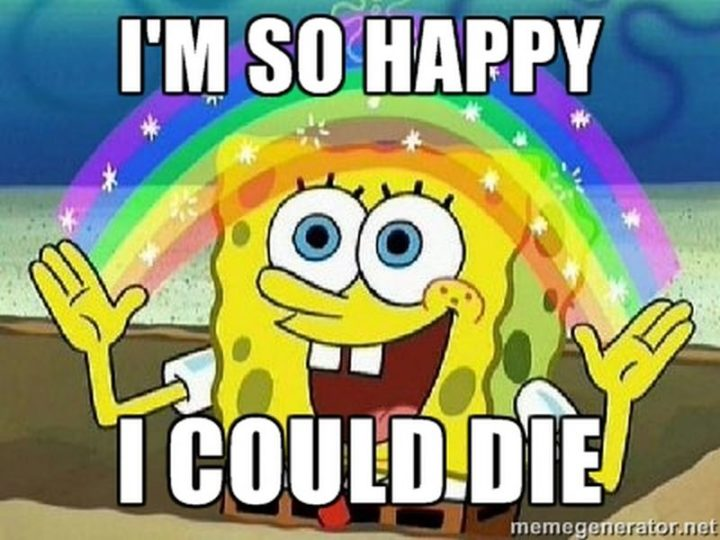 "85 Happy Memes - ""I'm so happy I could die."""
