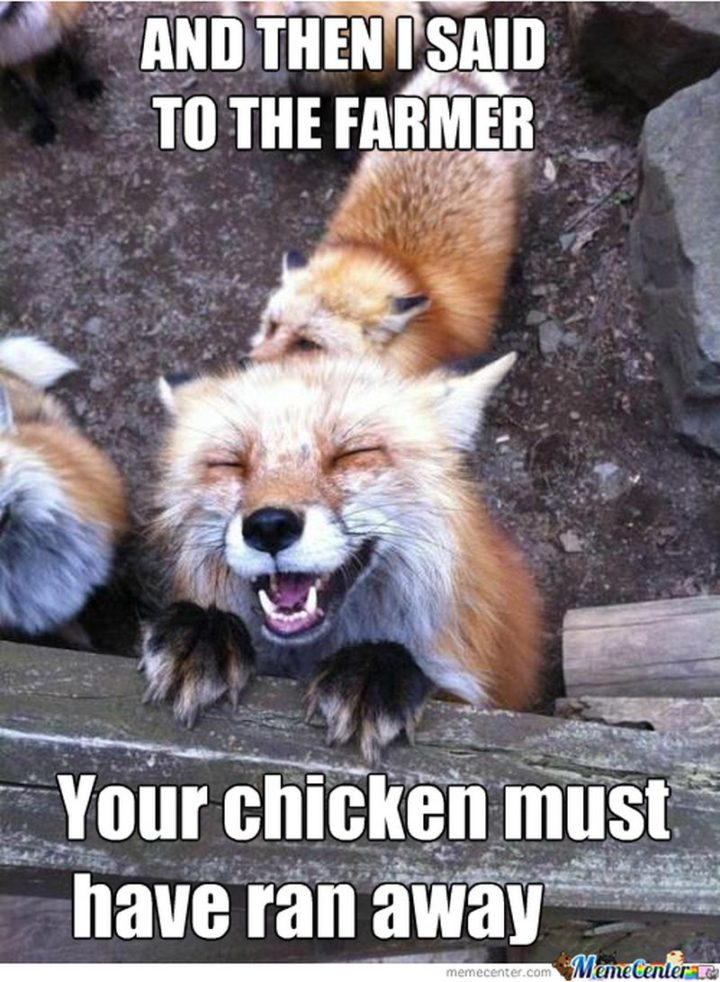 "85 Happy Memes - ""And then I said to the farmer, your chicken must have ran away."""