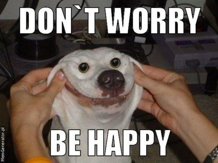 "85 Happy Memes - ""Don't worry, be happy."""