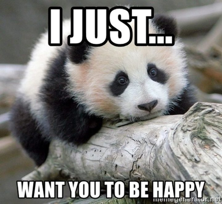 "85 Happy Memes - ""I just want you to be happy."""