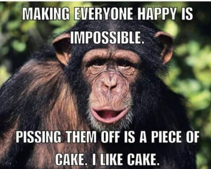 "85 Happy Memes - ""Making everyone happy is impossible. Pissing them off is a piece of cake. I like cake."""