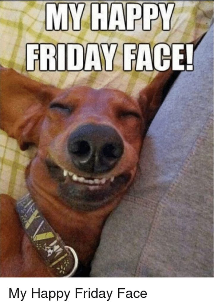 "85 Happy Memes - ""My happy Friday face."""