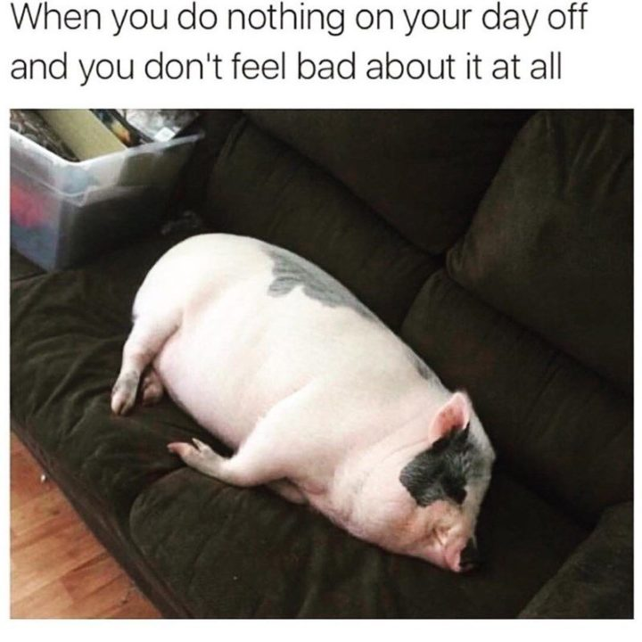 "85 Happy Memes - ""When you do nothing on your day off and you don't feel bad about it at all."""