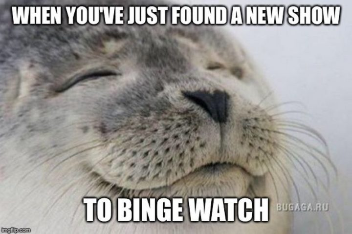 "85 Happy Memes - ""When you've just found a new show to binge watch."""