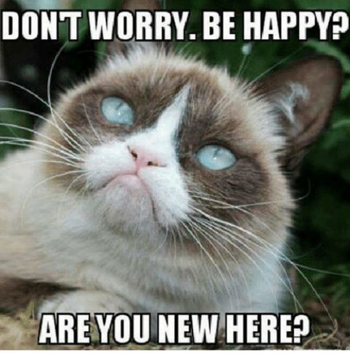 "85 Happy Memes - ""Don't worry. Be happy? Are you new here?"""
