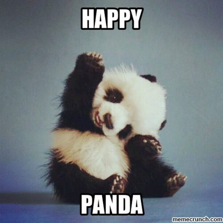 "85 Happy Memes - ""Happy panda."""