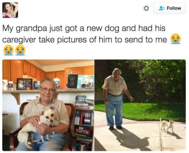 "85 Happy Memes - ""My grandpa just got a new dog and had his caregiver take pictures of him to send to me."""