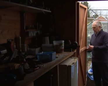 Man Finally Discovers Who Has Been Secretly Cleaning His Shed Every Night