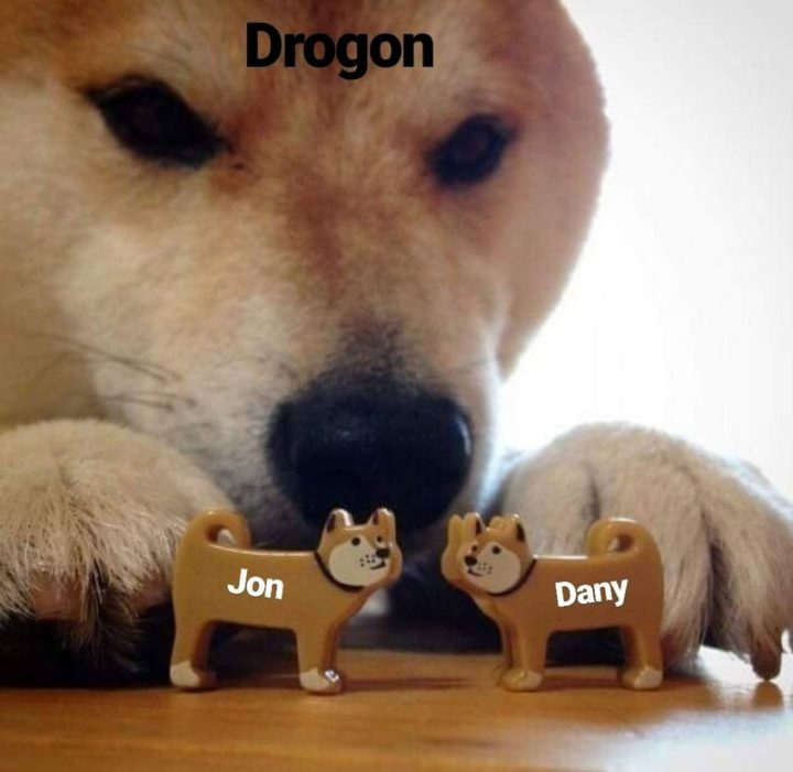 "91 Game of Thrones Memes - ""Drogon. Jon. Dany."""