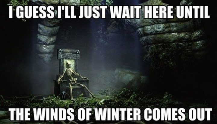 "91 Game of Thrones Memes - ""I guess I'll just wait here until the winds of winter comes out."""