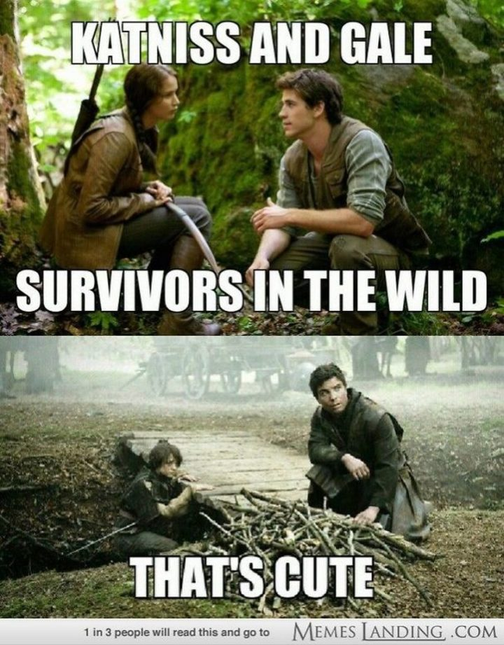 "91 Game of Thrones Memes - ""Katniss and Gale. Survivors in the wild. That's cute."""