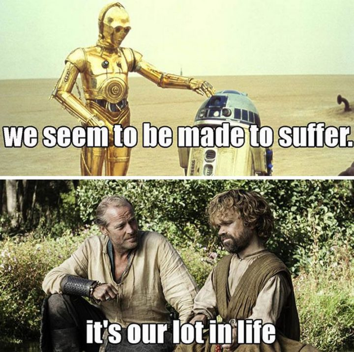 "91 Game of Thrones Memes - ""We seem to be made to suffer. It's our lot in life."""