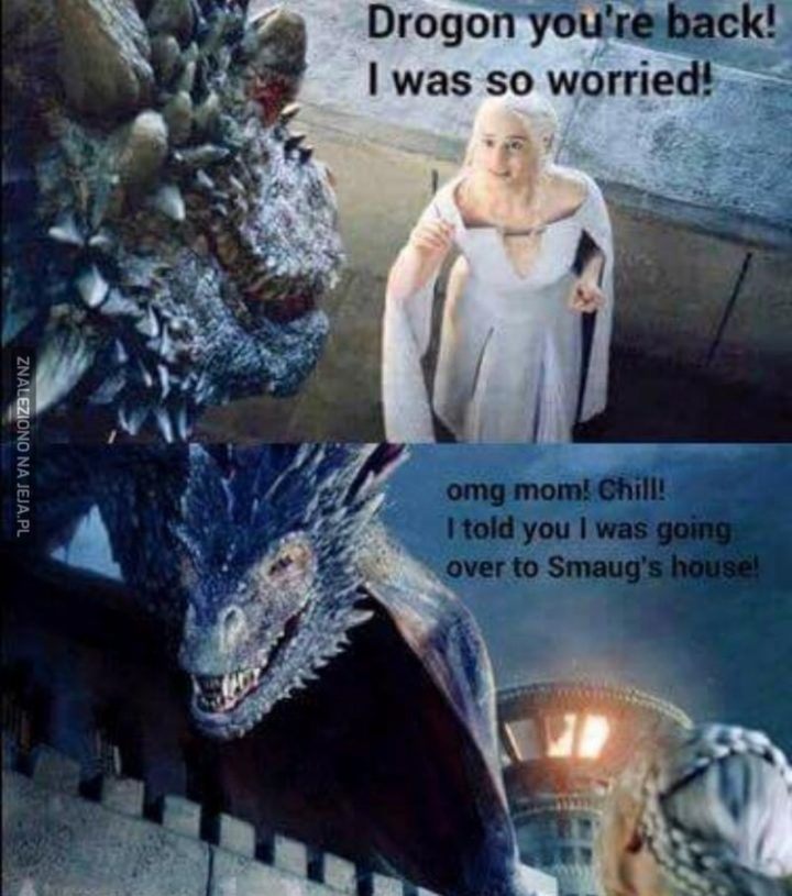 "91 Game of Thrones Memes - ""Drogon, you're back! I was so worried! OMG mom! Chill! I told you I was going over to Smaug's house!"""