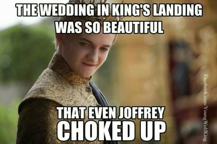 "91 Game of Thrones Memes - ""The wedding in King's Landing was so beautiful that even Joffrey choked up."""