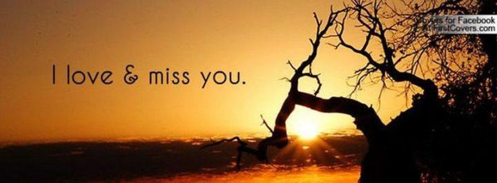 "101 I miss you memes - ""I love & miss you."""
