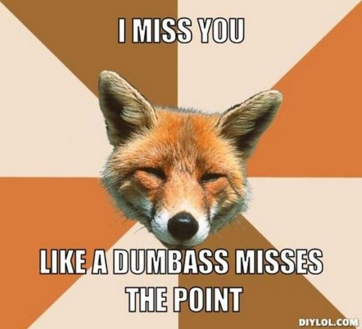 "101 I miss you memes - ""I miss you like a dumbass misses the point."""