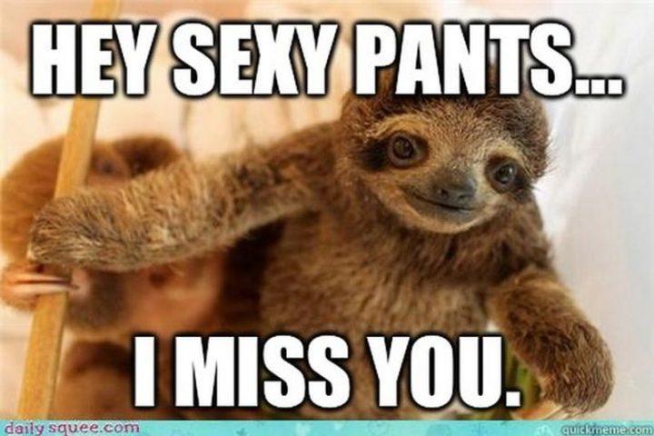 "101 I miss you memes - ""Hey sexy pants...I miss you."""