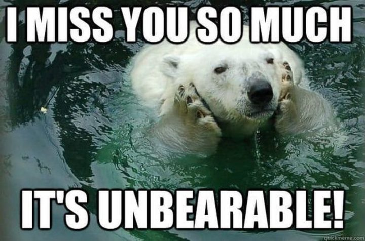 "101 I miss you memes - ""I miss you so much. It's unbearable."""
