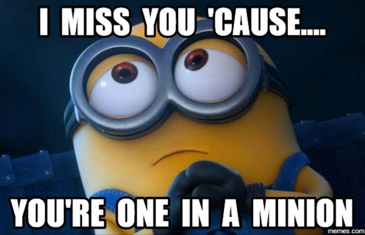 "101 I miss you memes - ""I miss you 'cause...you're one in a Minion."""