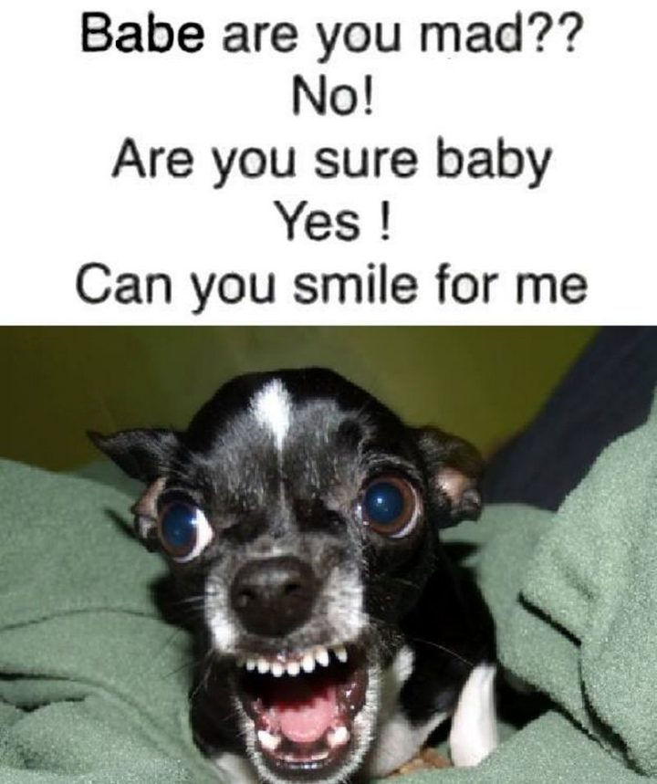 "Hilariously Funny Memes - ""Babe, are you mad?? No! Are you sure baby? Yes! Can you smile for me?"""
