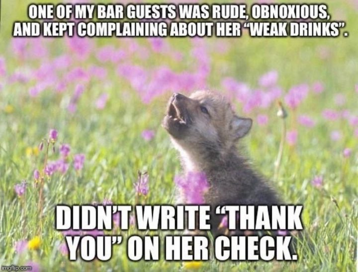 "Hilariously Funny Memes - ""One of my bar guests was rude, obnoxious, and kept complaining about her 'weak drinks'. Didn't write 'thank you' on her check."""