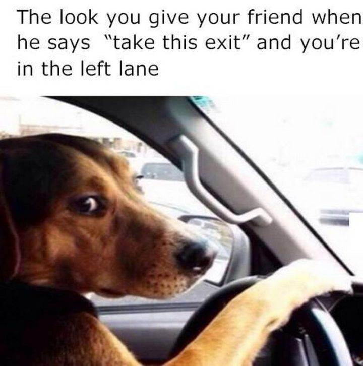 "Hilariously Funny Memes - ""The look you give your friend when he says 'take this exit' and you're in the left lane."""