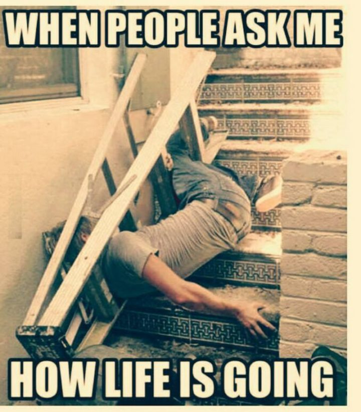 "Hilariously Funny Memes - ""When people ask me how life is going."""