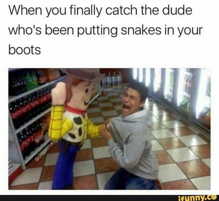 "Hilariously Funny Memes - ""When you finally catch the dude who's been putting snakes in your boots."""