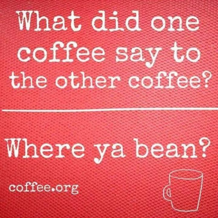 "Hilariously Funny Memes - ""What did one coffee say to the other coffee? Where ya bean?"""