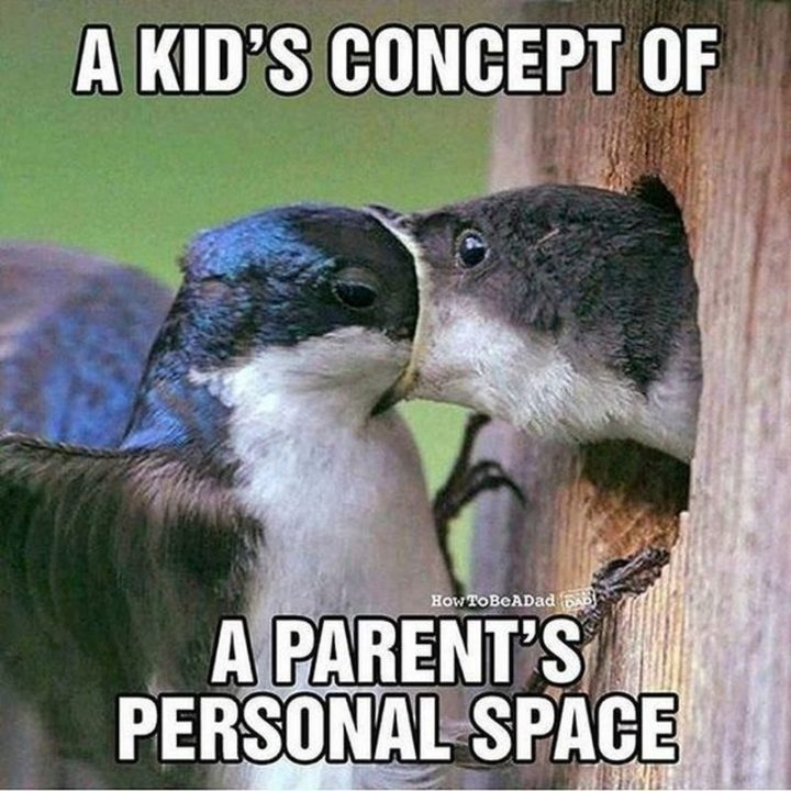 "101 Funny Mom Memes - ""A kid's concept of a parent's personal space."""