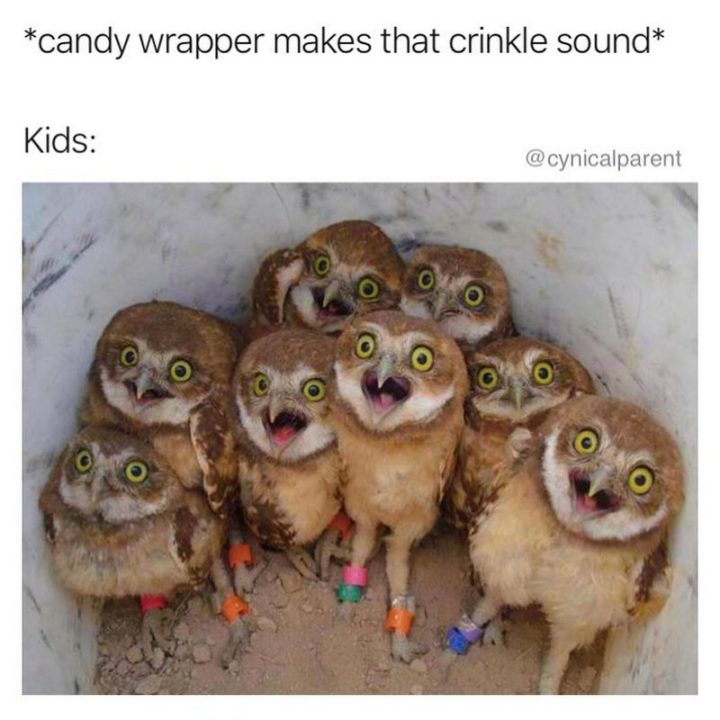 "101 Funny Mom Memes - ""*candy wrapper makes that crinkle sound*. Kids:"""