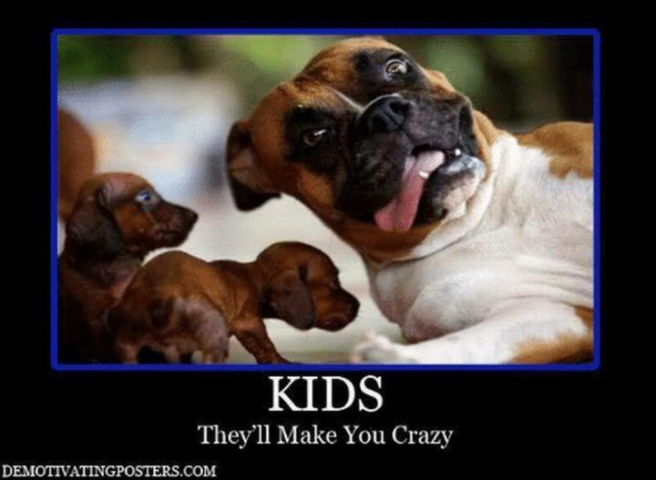 "101 Funny Mom Memes - ""Kids. They'll make you crazy."""