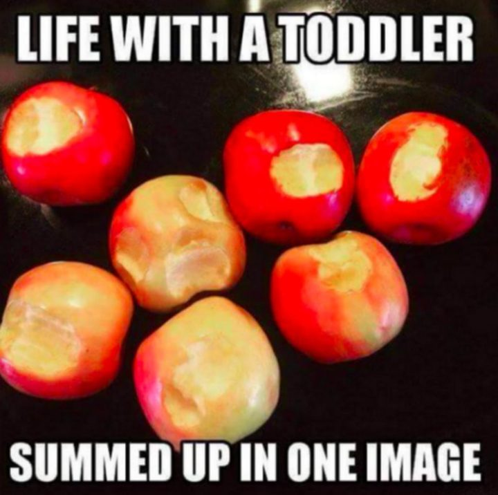 "101 Funny Mom Memes - ""Life with a toddler summed up in one image."""