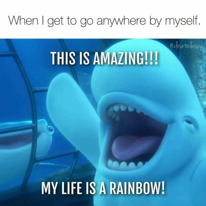 "101 Funny Mom Memes - ""When I get to go anywhere by myself. This is amazing!!! My life is a rainbow!"""