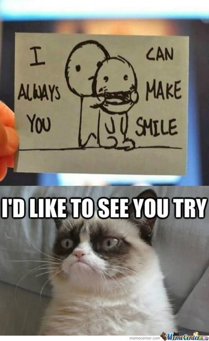 """101 Smile Memes - """"I can always make you smile. I'd like to see you try."""""""