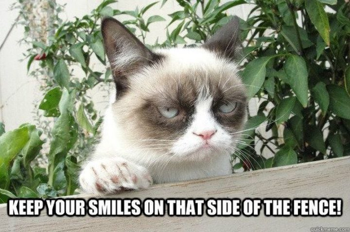 """101 Smile Memes - """"Keep your smiles on that side of the fence!"""""""