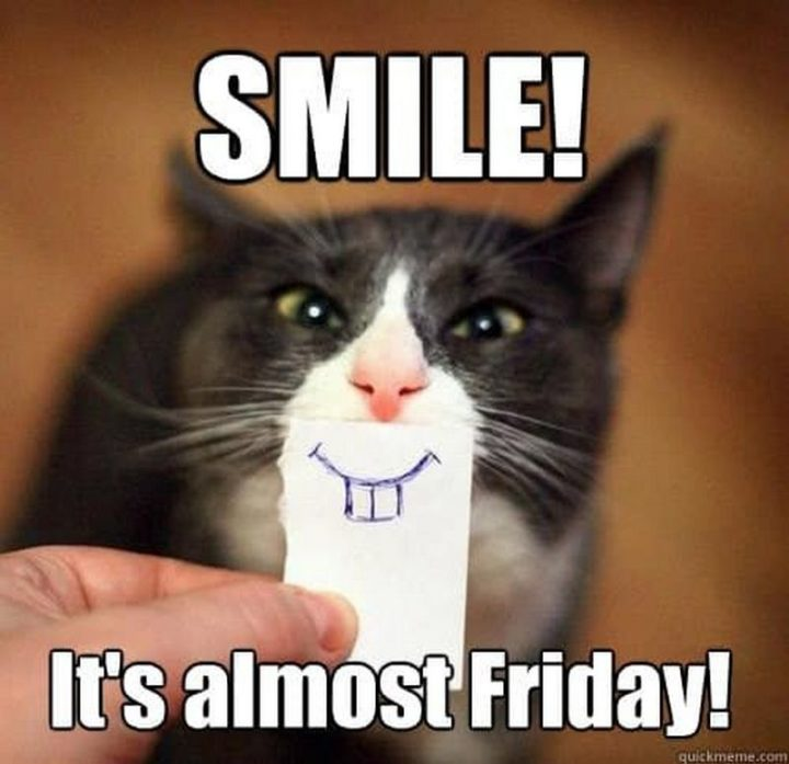 """101 Smile Memes - """"Smile! It's almost Friday!"""""""