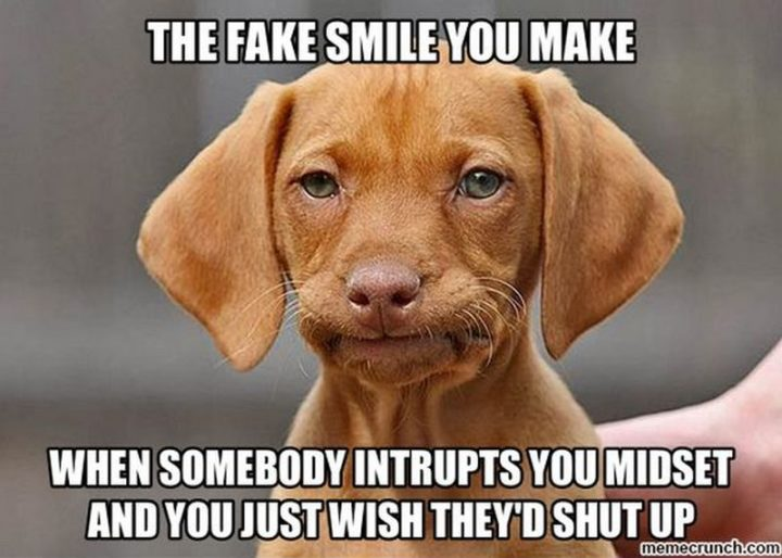 """101 Smile Memes - """"The fake smile you make when somebody intrupts you midset and you just wish they'd shut up."""""""