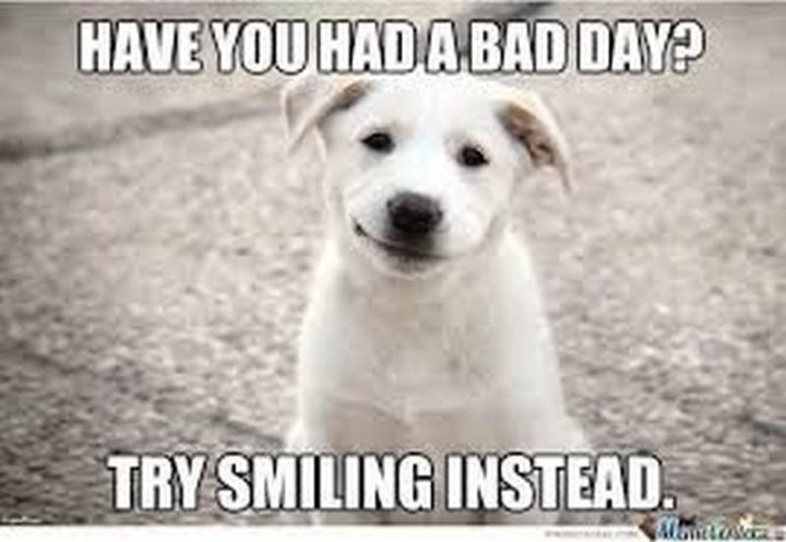 """101 Smile Memes - """"Have you had a bad day? Try smiling instead."""""""