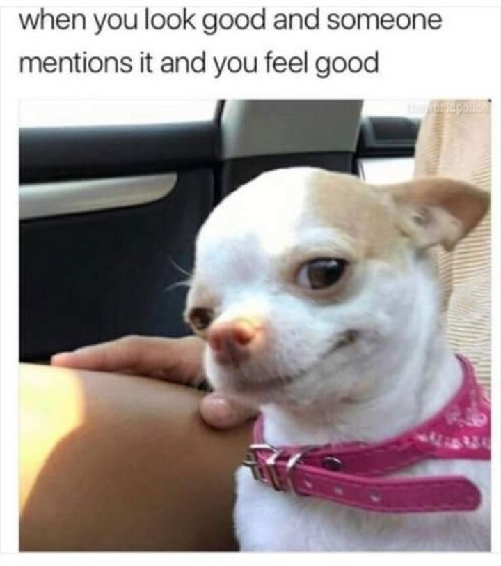 """101 Smile Memes - """"When you look good and someone mentions it and you feel good."""""""