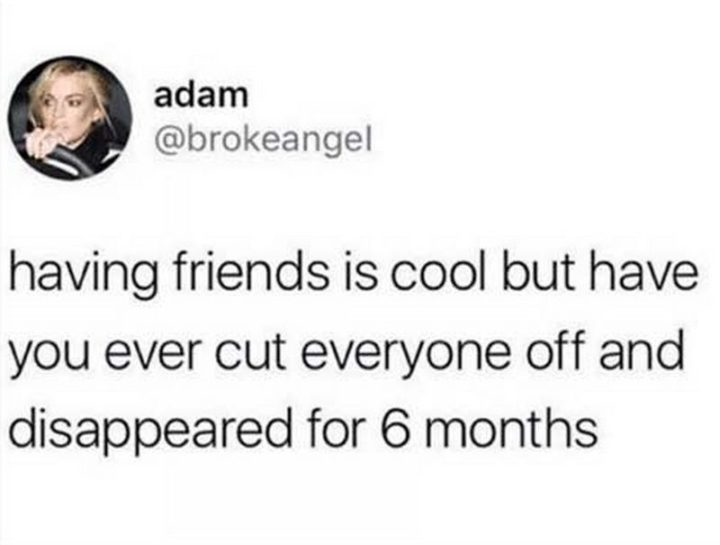 "61 Depression Memes - ""Having friends is cool but have you ever cut everyone off and disappeared for 6 months."""