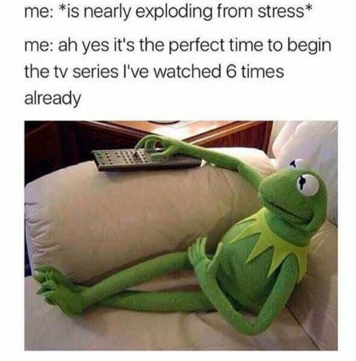 "61 Depression Memes - ""Me: *Is nearly exploding from stress*. Me: Ah yes It's the perfect time to begin the TV series I've watched 6 times already."""